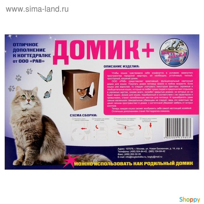 Что приносит в дом Ваша кошка? Приметы, связанные с окрасом ... | 700x700