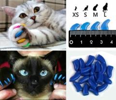 Корм для кошек премиум класса - выбрать лучший корм для